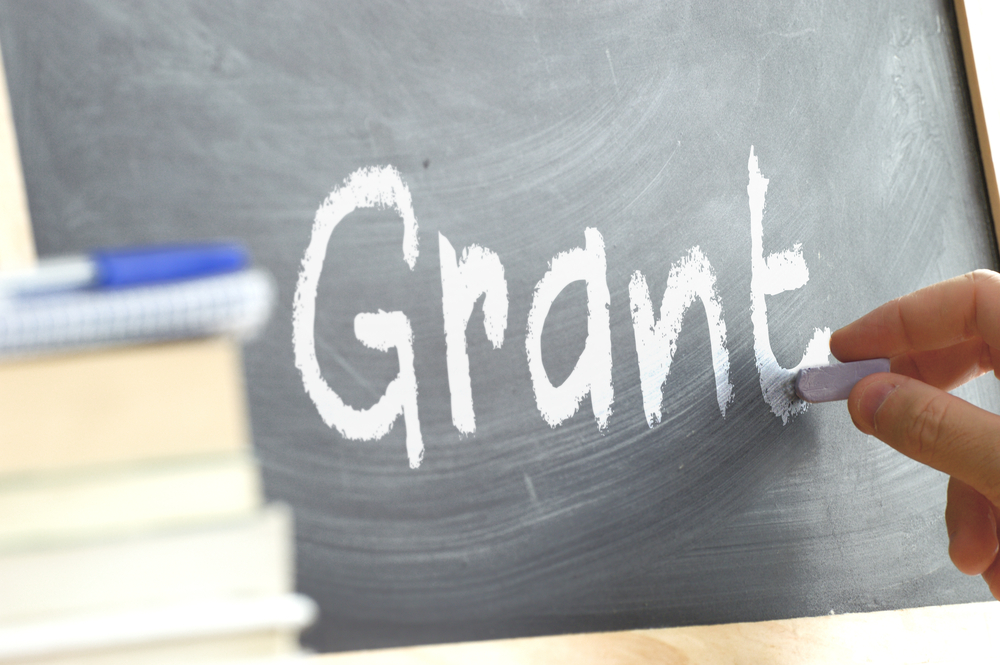 healthcare it grants